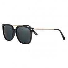 Sorte Solbriller